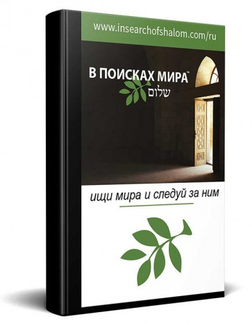 Russisch In Search of Shalom Nieuwe Testament Bijbel