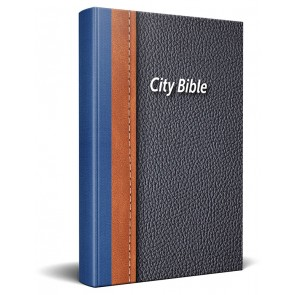Dutch Bible Traditional Softcover HSV