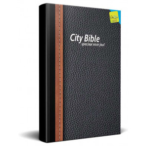 Dutch New Testament Bible Traditional