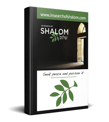 in-search-of-shalom-customized